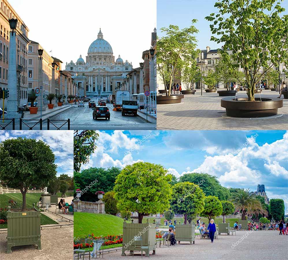 Grandes ciudades europeas como Roma, Paris, Luxemburgo y otras muchas tienen desde hace años los arboles de su casco histórico en diferentes modelos de grandes maceteros.